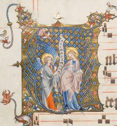 Aarau  Titre du manuscrit:Graduale oesa, Proprium de sanctis Caractéristiques:Parchemin · 209 ff. · 61 x 41 cm · Cologne · 1330-1335 Langue:Latin Comment citer:Aarau, Aargauer Kantonsbibliothek, MsWettFm 3: Graduale oesa, Proprium de sanctis (http://www.e-codices.unifr.ch/fr/list/one/kba/WettFm0003)