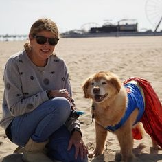Not all heroes wear capes but this little lady does! We're looking forward to O.C.toberfest this coming weekend including the Howl-O-Ween Pet Parade. Tell us what your pet is dressing as this year! Visit ococean.com/events/fall-events for the full schedule of O.C.toberfest events! Please remember that masks are required when social distancing is not possible. 🍂🐶🧡 Repost courtesy @townofoceancity 🔆 #marylandscoast #ocmd #oceancitymd visitmarylandscoast.org Maryland Beaches, Pet Parade, Ocean City Md, All Hero, Capes, Schedule, Your Pet, Condo, Road Trip
