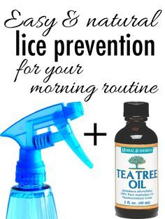 The Homestead Survival | Natural Head Lice Prevention with Tea Tree Oil | Home Remdey  http://thehomesteadsurvival.com