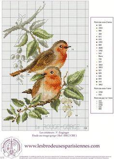 Gallery.ru / Фото #2 - 2 птички - irisha-ira