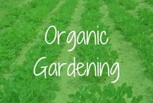 Organic Gardening Products | Eco-Friendly | Sustainable Gardening | Planet Green Spot | 888-574-6348