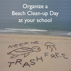 #lessonplans on how one school organized a beach clean up day in their community. #classroom #kidsactivities