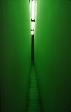"Bruce Nauman, ""Green Light Corridor"""
