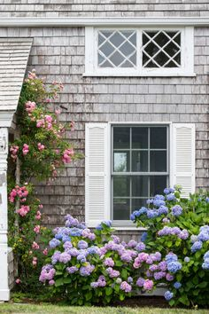 Cape Cod Exterior, Cottage Exterior, Chatham Cape Cod, Cape Cod Cottage, Country Home Exteriors, Cape Cod Style House, Cape Cod Beaches, Coastal Gardens, French Country Decorating
