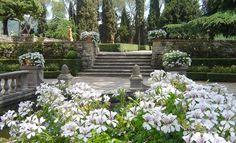 Giardino all'italiana Dimensione Verde