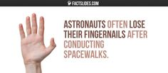 Astronauts often lose their fingernails after conducting spacewalks.