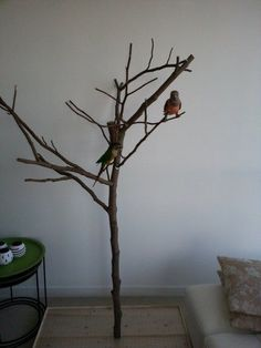 DIY Foraging Tree Stand