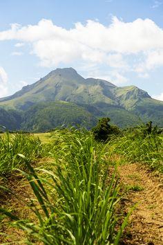 La montagne Pelée est un volcan actif situé dans le Nord de la Martinique