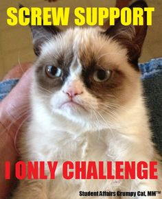 Student Affairs Grumpy Cat! some days I definitely feel like this.