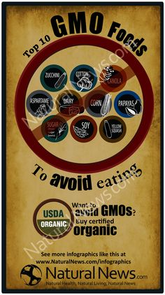 Top Ten GMO Foods to Avoid Eating-  Yes, check that label and see how many items contain, Corn, Soy, Canola or Sugar, which is made from Sugar Beets and are all straight GMO!