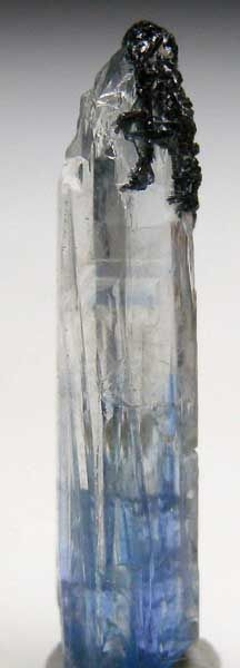 Z244 - Jeremejevite  - Transparent single crystal grading from blue at the base up to clear at the termination.  The terminationis etched and is partially covered by black Schorl crystals. Valued at $200.       From Marin Mineral   via Stonefinder