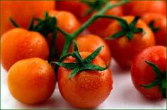 BULK 100 Seeds Large Red Cherry Tomato Grown on Our par CheapSeeds, $1.99