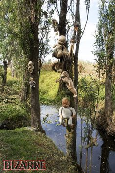 """Known as """"La Isla de la Munecas"""", by the Spanish, The Island of the Dolls is perhaps the creepiest tourist attraction in Mexico. Located within an extensive network of canals, south of Mexico City, the island is a place of mystery and superstition."""