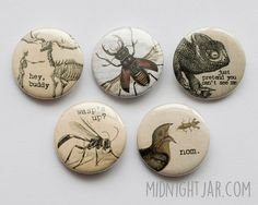 Natural history/nature vintage prints with captions - set of 5 button badges (25mm)