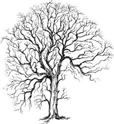 Idea for my string tree wall mural 4