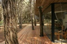 Casa Mar Azul by BAK arquitectos, Mar Azul, Buenos Aires House Design Pictures, Small House Design, Modern House Design, Pine Trees Forest, Casas Containers, Pub Design, Small Modern Home, Seaside Resort, Forest House