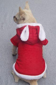 5 Color Larger Dog T-shirt  Blank