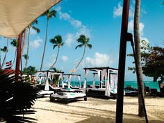 Presidential Suites, Punta Cana, DR - The WanderBaums