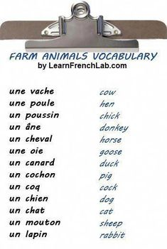 Learn the names of Forest Animals in French. Learn the names of Forest Animals in French. French Expressions, French Language Lessons, French Language Learning, French Lessons, German Language, Spanish Lessons, Japanese Language, Spanish Language, Foreign Language