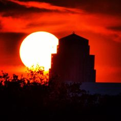Transit of Venus and the Williams Tower