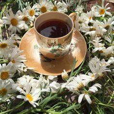 Good Night Image, I Love Coffee, Tableware, Flower, Photos, Morning Coffee, Dining, Good Morning Greetings, Be Nice