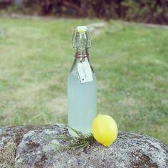 Lemonade Lemonade, Root Beer