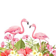 Tropical leaves and flamingo Flower Background Wallpaper, Flower Backgrounds, Wallpaper Backgrounds, Flamingo Painting, Flamingo Decor, Watercolor Flowers, Watercolor Art, Flamingo Pictures, Flamingo Wallpaper