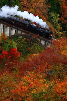 Autumn Colors, Fukushima, Japan