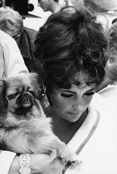 Elizabeth Taylor, siempre con sus joyas. - elizabeth-taylor Photo