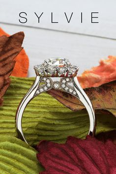 This modern halo engagement ring features a stunning 1 carat round center in a large shimmering cushion halo and high polish shank for a total weight of .79 carats. 1 carat engagement Rings. Sylvie collciton 1 Carat Engagement Rings, Double Halo Engagement Ring, Engagement Ring Styles, Designer Engagement Rings, Cushion Halo, Thing 1, Filigree Design, Classic Gold, Unique Rings