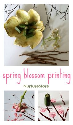 Spring blossom printing : a lovely spring art activity for kids