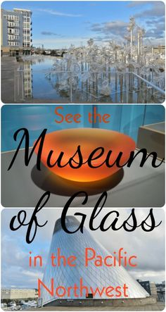 You might be familiar with Chihuly Garden in Seattle, but you haven't seen it all unless you've seen Tacoma's Museum of Glass too!