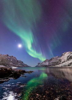 AURORA BOREALIS - Ersfjordbotn, Troms Fylke, Norvegia