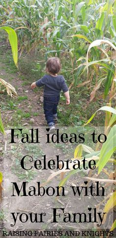 Fall ideas to Celebrate Mabon with your Family - Come get ideas on activities, foods, crafts and more to do with your family of all ages.