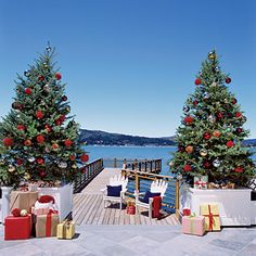 For a traditional look, flank the sides of a dock or sidewalk with two trees surrounded by white clapboard. It's also an instant frame for family holiday card pictures!