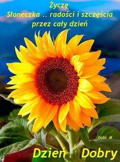 Musica Folk, Good Morning Beautiful Gif, Beautiful Roses, Plants, Motto, Disney, So Happy, Music Is Life, Living Alone