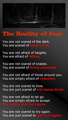 The Reality of Fear Infographic. So very true.
