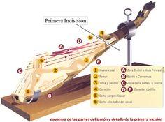 Como cortar un Jamon Iberico de Bellota
