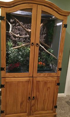 This Clever DIY-er Upcycled An Old Armoire Into An Incredible Pet Paradise diy armoire chameleon mansion upcycle Reptile Habitat, Reptile Room, Reptile Cage, Reptile Tanks, Reptile Pets, Lizard Cage, Snake Cages, Chameleon Terrarium, Terrarium Reptile