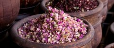 #Rose Festival #Kalaat M'gouna #Morocco