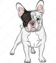 Resultado de imagem para bulldog ilustração