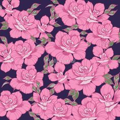 Pink Roses by HollyAstral
