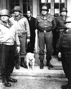 General Patton and his Staff. Can't forget his doggie dog.
