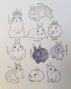 drawings of animals Cute Animal Drawings, Animal Sketches, Cute Drawings, Rabbit Drawing, Rabbit Art, Bunny Sketches, Art Sketches, Bunny Tattoos, Dibujos Cute