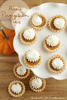 Mini Pumpkin Pies | Handmade in the Heartland