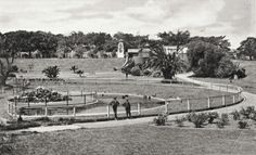 Moore Park Zoo in the eastern suburbs of Sydney (year unknown). Moore Park, South Wales, Historical Photos, Sydney, Past, Australia, History, Pictures, Travel