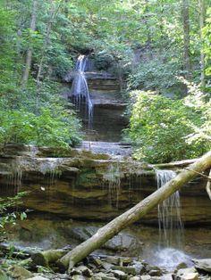 Tioga Falls Hiking Trail - Kentucky Trails | AllTrails.com
