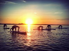 Sunset SUP Yoga with SUP YO! www.sup-yo.com