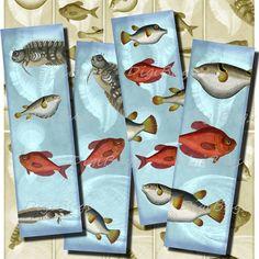 Printable Bookmarks - Under the Sea, Fish 03 - Digital File, Vintage Images, Instant Download - DigiBugs Printable Bookmarks, Printables, Fish Illustration, Illustrations, Sea Fish, Digital Collage, Under The Sea, Vintage Images, My Etsy Shop