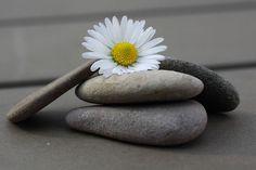 Decorar Piedras de Playa.